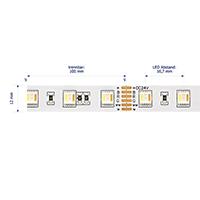 Vorschau: 24W/m Farbige LED-Streifen RGB/2400-6000K 5m RGB/Tuneable White 60LED/m IP20 24V 1590lm/m RA90